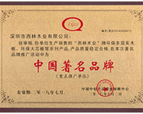 西林荣获中国十大品牌荣誉